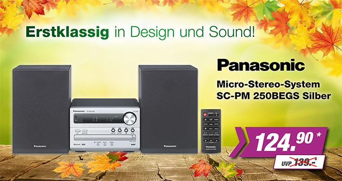 Panasonic Micro-Stereo-System